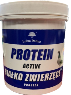 PROTEIN ACTIVE.png